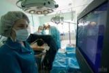 В Министерстве здравоохранения назвали основной причиной смерти в Украине