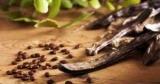 Кэроб – полезный заменитель какао: кому может нанести вред